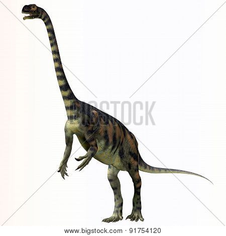 Massospondylus Over White