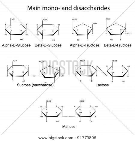Formulas Of Main Cyclic Monosaccharides And Disaccharides
