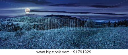 Meadow Near Forest In Mountains At Night