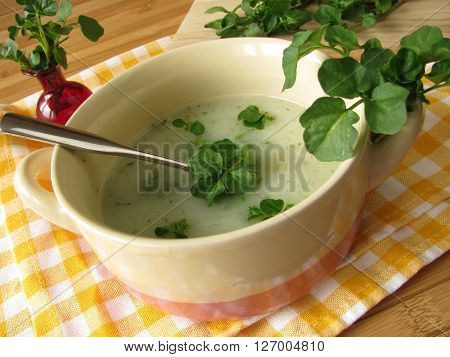 Homemade herb cream soup with fresh watercress