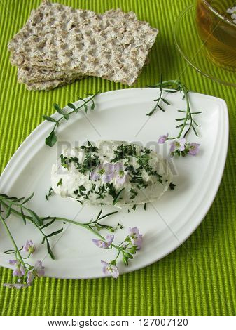 Homemade herb curd cheese with cuckoo flower