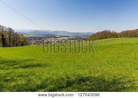 Meadow On Mountain Heitersberg With View To Jura Chain, Near Zurich, Switzerland