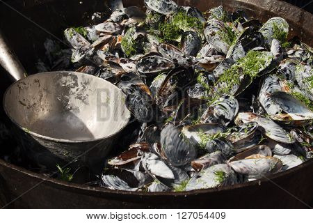 cooked mussels on the plate background pattern
