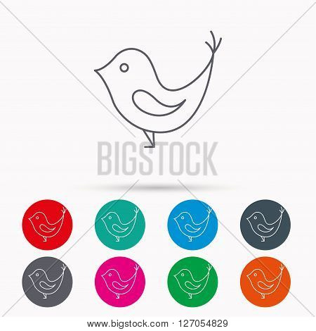 Bird with beak icon. Cute small fowl symbol. Social media concept sign. Linear icons in circles on white background.