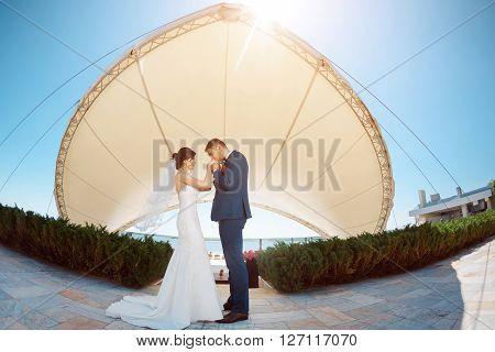 Young wedding couple enjoying romantic moments groom kissing bride's hand outside against modern buildings. Fisheye lens