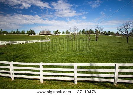Lexington, Kenutcky, USA. April 22, 2016 - World famous Donamire Farms in Lexington, Kentucky is a premier thoroughbred training and breeding facility. The farm is open to tours through a local tour company.