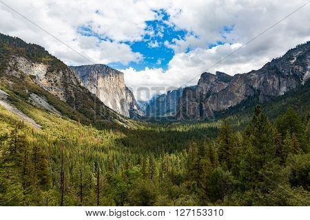 El Capitan In Yosemite National Park, California