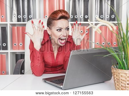 Angry Screaming Business Woman In Office
