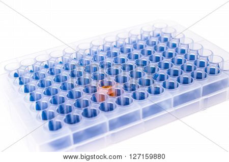 96 well microplate with different color samples