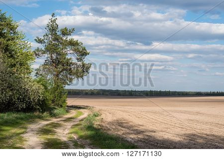 Sown field and a country road under a cloudy sky