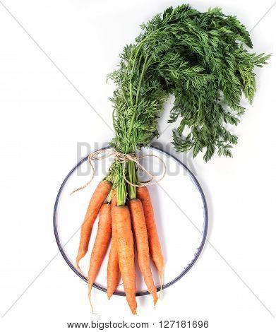 Bundle Of Carrots