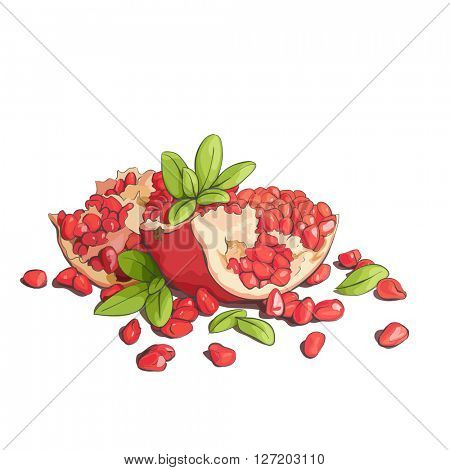 Ripe pomegranates with leaves on a white background