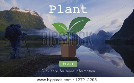 Plant Trees Ecology Environmental Conservation Growing Concept