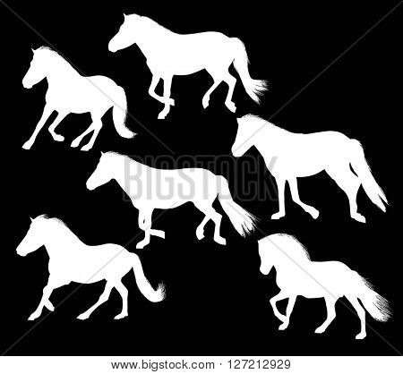 illustration with six horses isolated on black background