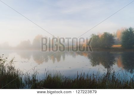 Serene morning mist autumn waterscape at dawn