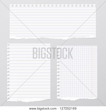 Pieces of torn white lined, squared notebook paper are stuck on gray background.