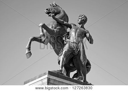 Bronze Statue Of The Horse Tamer, Vienna