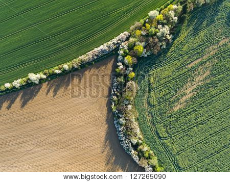 Aerial view of a field. Spring season.