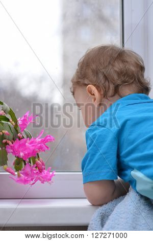 Small child looking out the window. The boy near the window. The child dreams. A small child in the room looking out the window. Childhood.