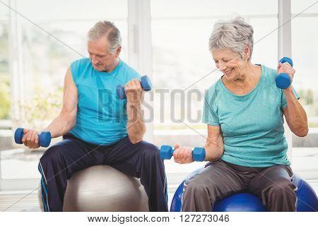 Smiling senior couple holding dumbbells while sitting on exercise ball at home