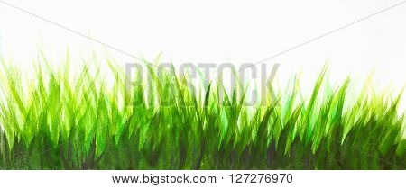 watercolor abstract background with green grass over white