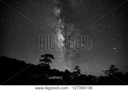 Silhouette Of Tree And Beautiful Milkyway On A Night Sky. Long Exposure Photograph.with Gain