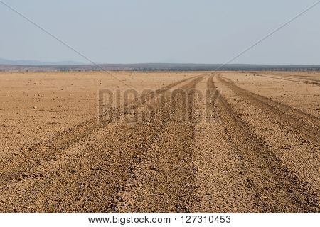Road going through the Amboseli desert (aka