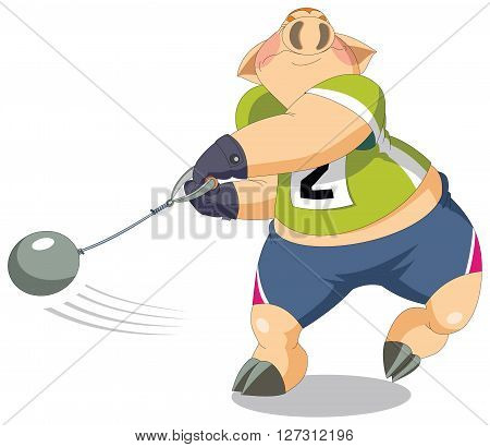 A strong and big piglet is hammer thrower