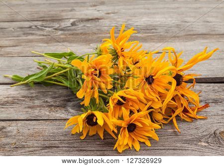 Bouquet yellow Rudbeckia for old wooden tables