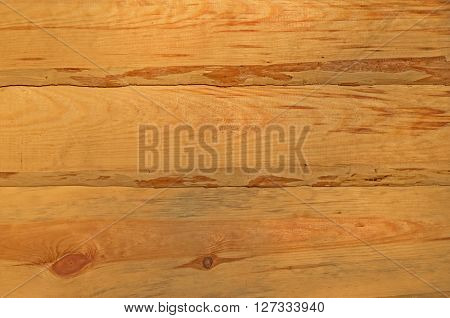 Wall of ecologically clean raw material of pine board wane