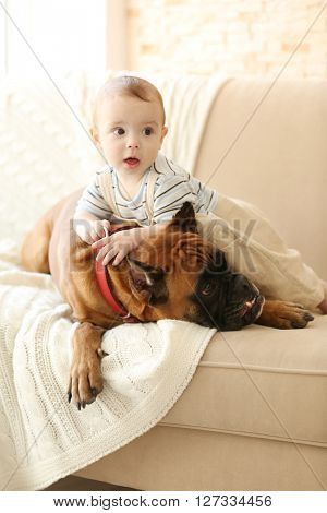 Little baby boy with boxer dog lying on a couch at home