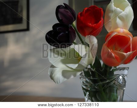 Tulips in a vase on a table in evening light