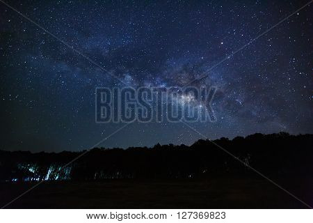 Silhouette Of Tree And Milky Way, Long Exposure Photograph, With Grain