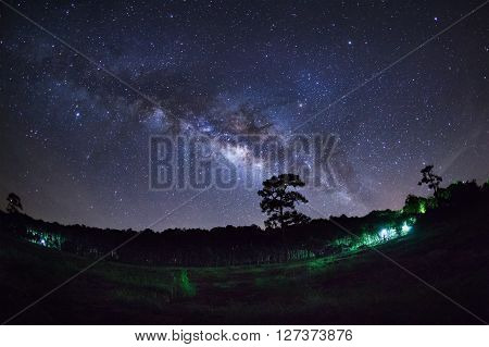 Silhouette Of Pine Tree And Milky Way At Phu Hin Rong Kla National Park,phitsanulok Thailand. Long E