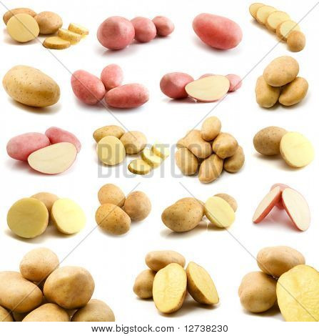 large page of potatoes isolated on the white