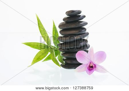 Black zen stones with Dendrobium orchid and green leaves