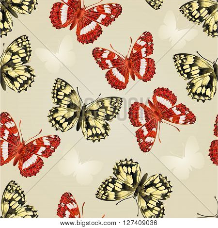 Seamless texture two butterflies beautiful butterfly silver background vector illustration