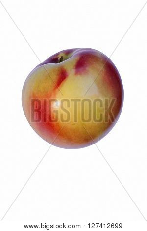 McIntosh apple (Malus domestica McIntosh). Image of single apple isolated on white background