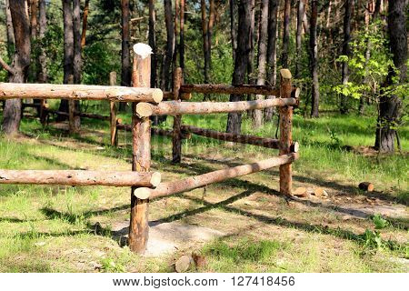 wooden fence in pine forest at nice sunny day