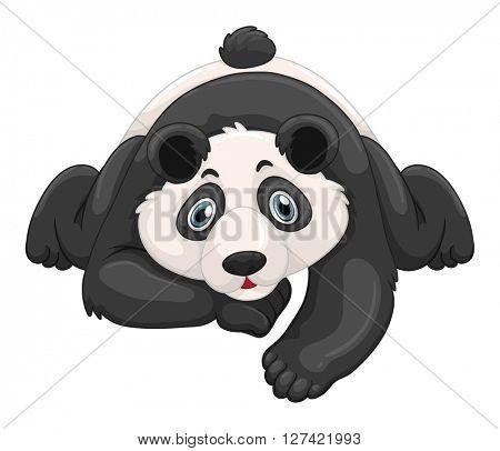 Cute panda crawling on the ground illustration