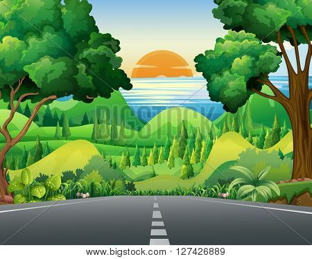 Scene with road and forest illustration