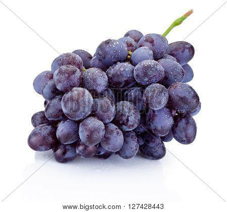 Wet bunch of blue grapes isolated on white background