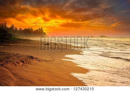 Tropical sunset on ocean beach. Sri Lanka