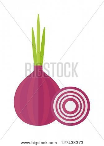 Whole bulb red onion with fresh green sprout, half rings isolated on white background. Vector illustration.