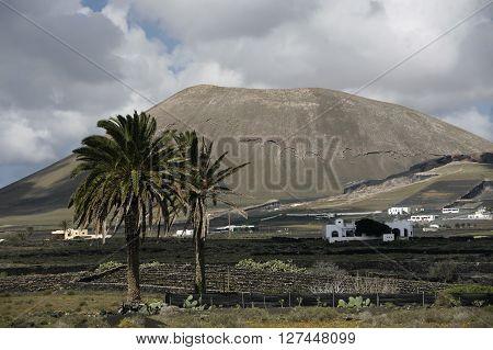 Europe Canary Islands Lanzarote