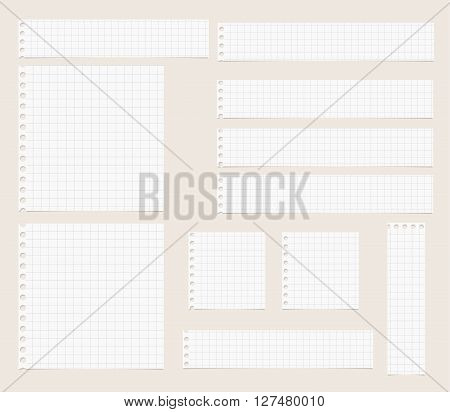 Pieces of cut out white squared notebook paper are stuck on light  brown background.