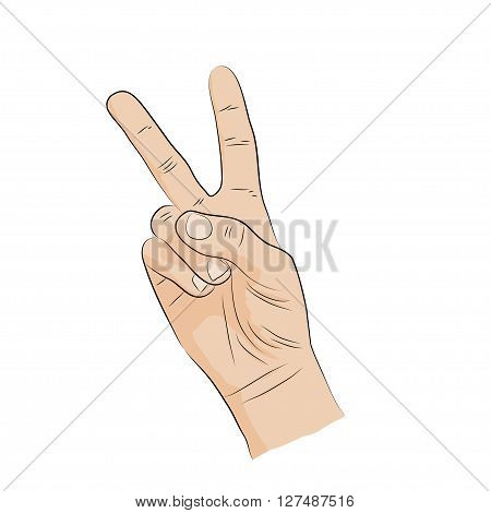 Hand - sign language. Victory V-shape  Icon.