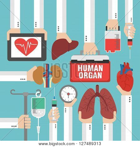 Human organ for transplantation design flat.Vector illustration