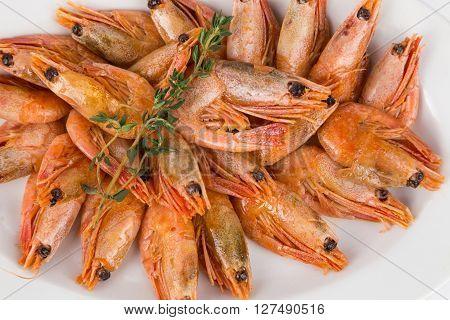 Portion Hot Shrimps On White Plate