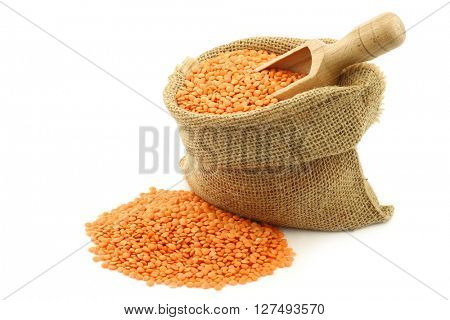 red lentils in a burlap bag with a wooden scoop on a white background
